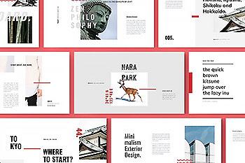 个性设计感的PPT模板 ROKA Powerpoint Template