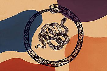 少见稀有的蛇插画插图集合