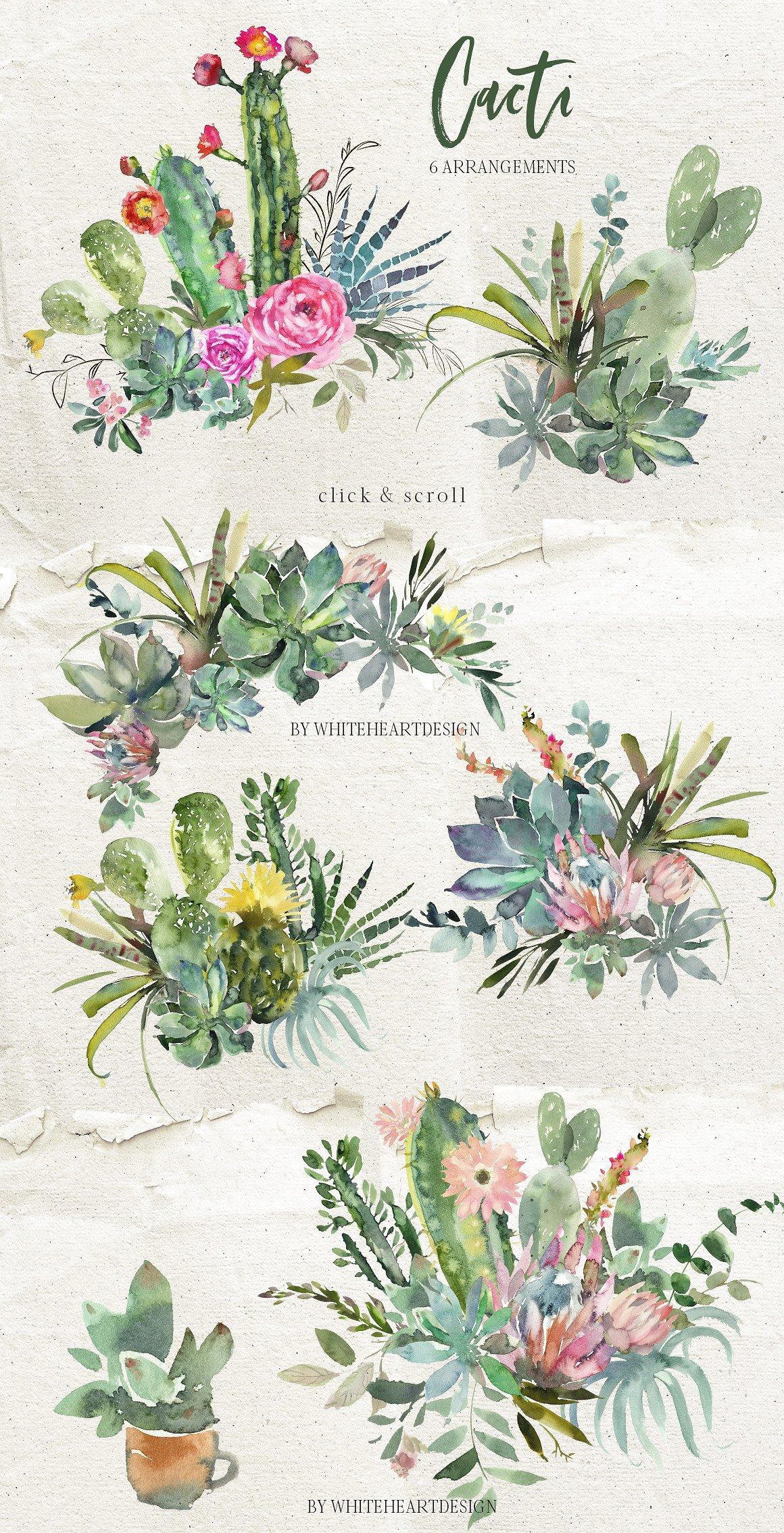 cact-watercolor-floral-succulent-clipart-.jpg