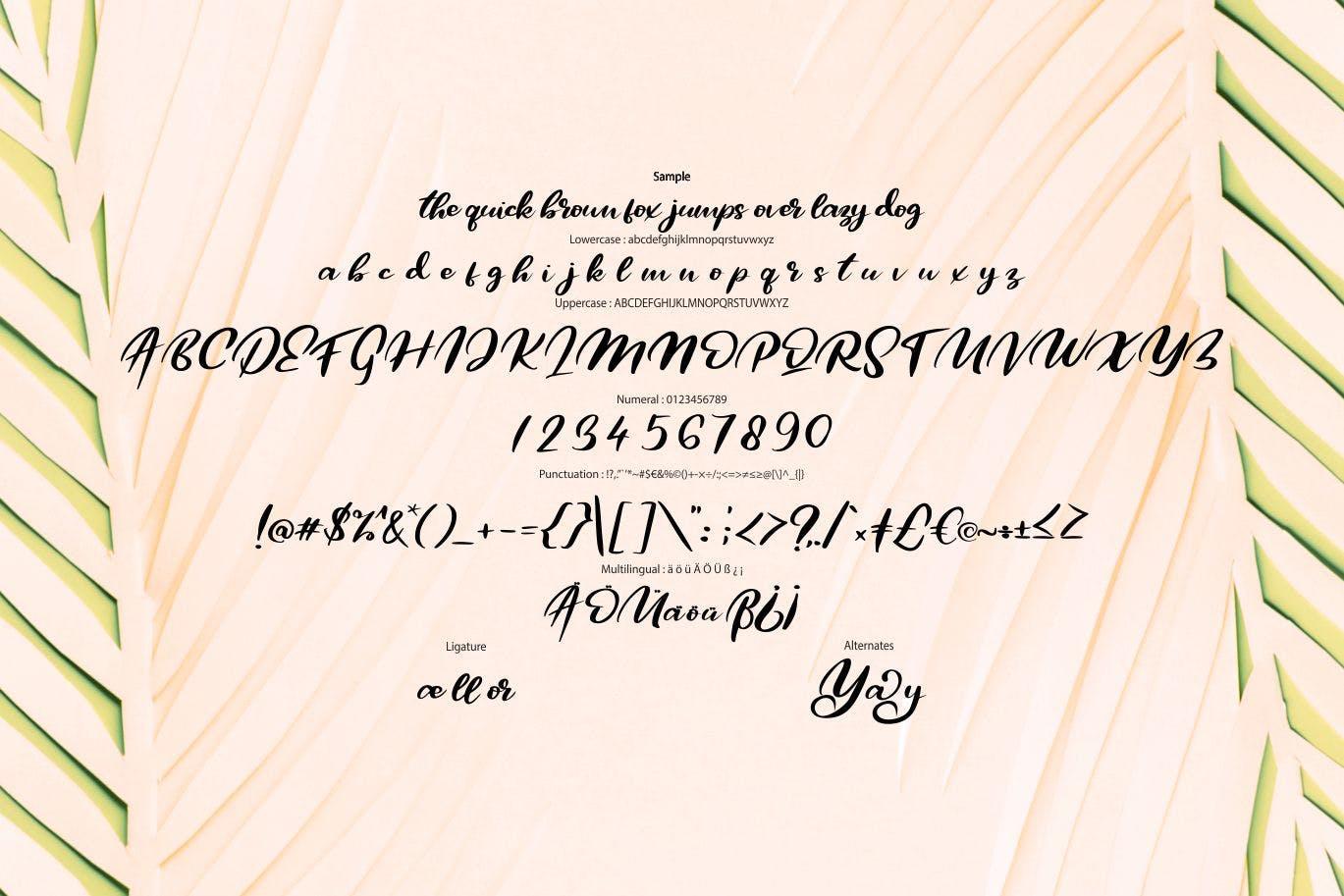 极简主义排版设计风格英文书法字体 Qors | Minimalism Script Font设计素材模板