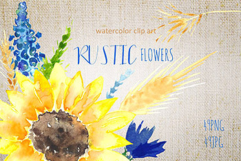 向日葵水彩logo设计 Sunflowers rustic watercolor clipart