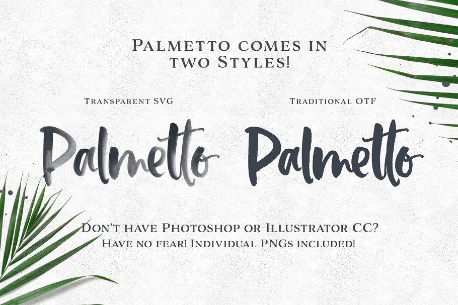 palmetto-preview12-.jpg