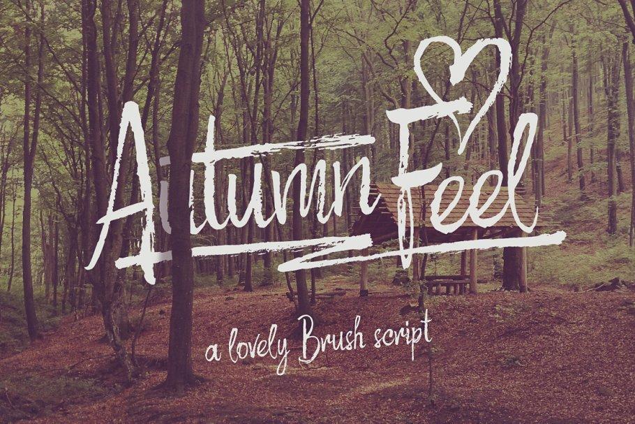 """手绘书法字体 Rough script """"Autumn Feel""""设计素材模板"""
