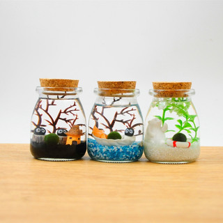 Shipping seaweed ball micro landscape ecological bottle hydroponic algae creative mini plant indoor potted green plant small gift