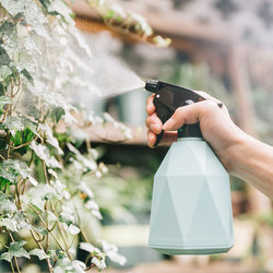 Watering bottle pouring watering gardening sprayer home sprinkles kettle small pressure watering can bottle disinfection cleaning special