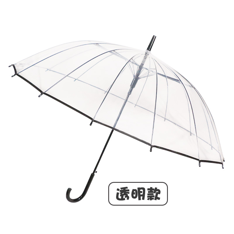 Transparent Bridal Umbrella