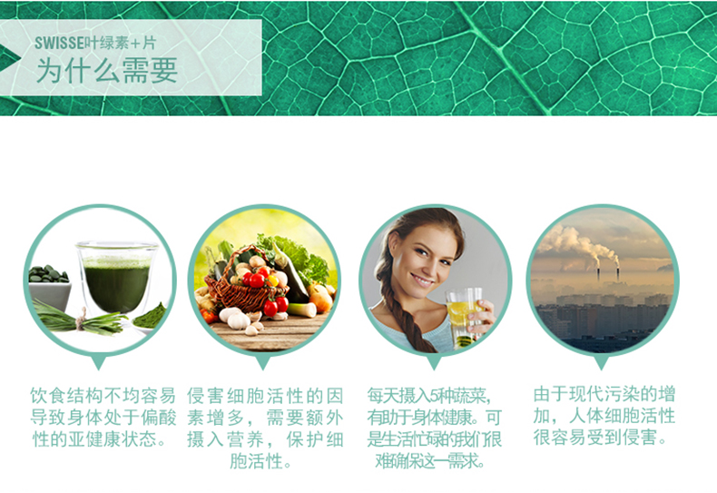 澳洲进口swisse 叶绿素片100片 有机调理肠胃清体成人通用 我们的产品 第5张