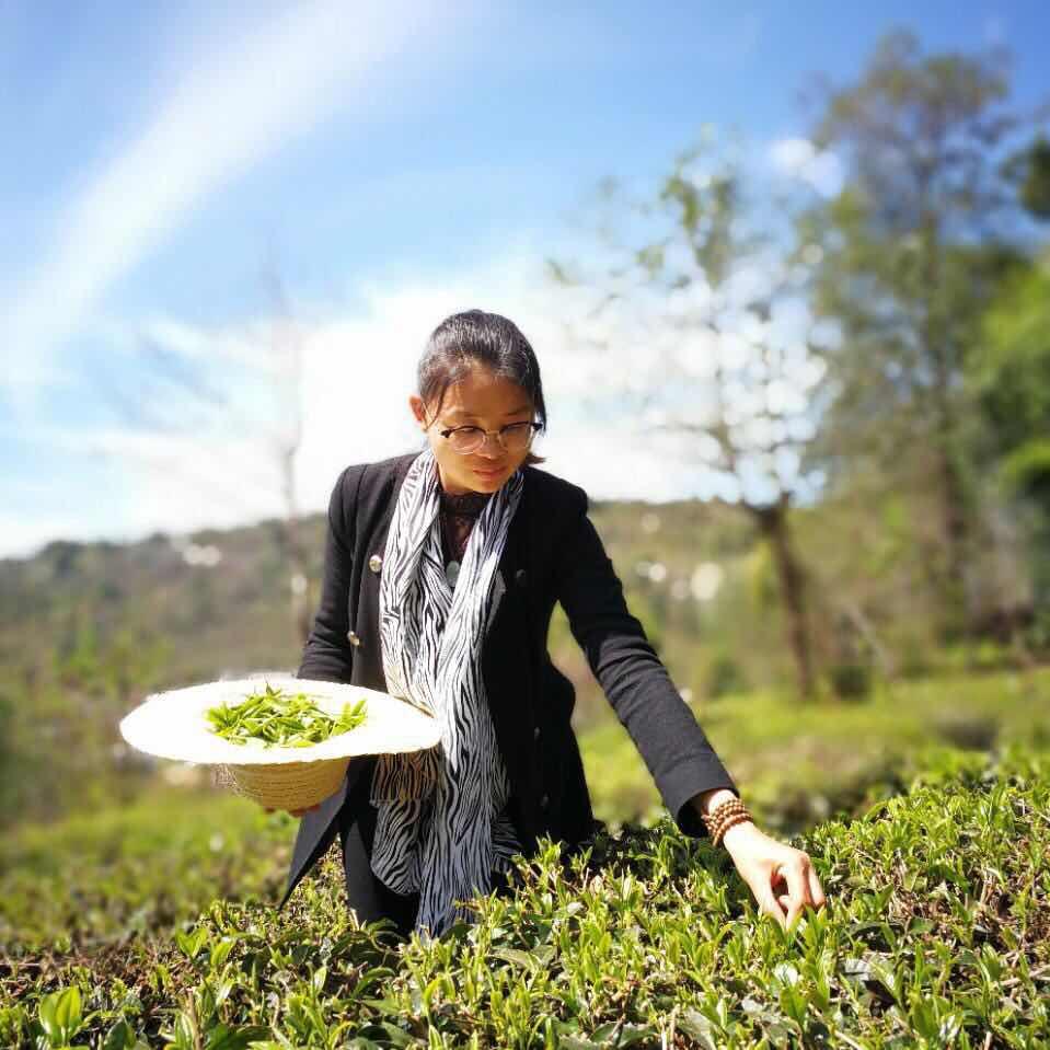 为了一款新茶,她拼出了100多个配方