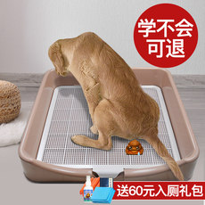 Teddy dog ​​toilet Golden Retriever large dog anti-stepping dog potty large large diaper dog toilet pet supplies