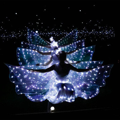 LED luminous wings, ballet performance costumes, fluorescent butterfly dance cloak, dance costume, belly dance cloak props.