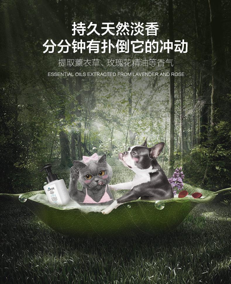 新猫咪泡沫浴露详情4444_09.jpg