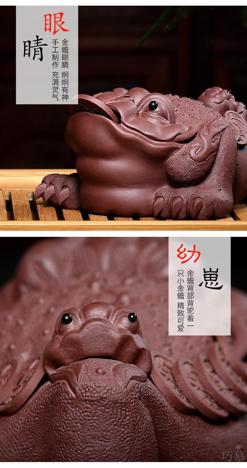 Qiao mu YH yixing pure purple clay by hand medium all three pure toad purple sand tea pets play tea tea set furnishing articles