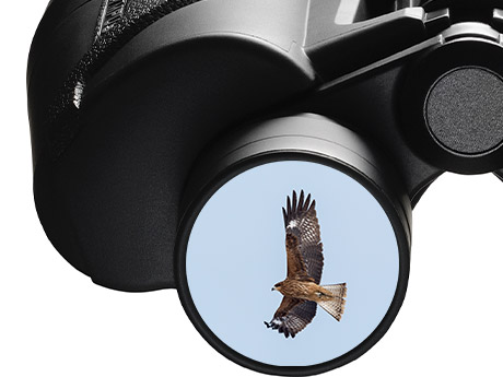 Olympus奥林巴斯 8x40S 新款广角户外双筒望远镜
