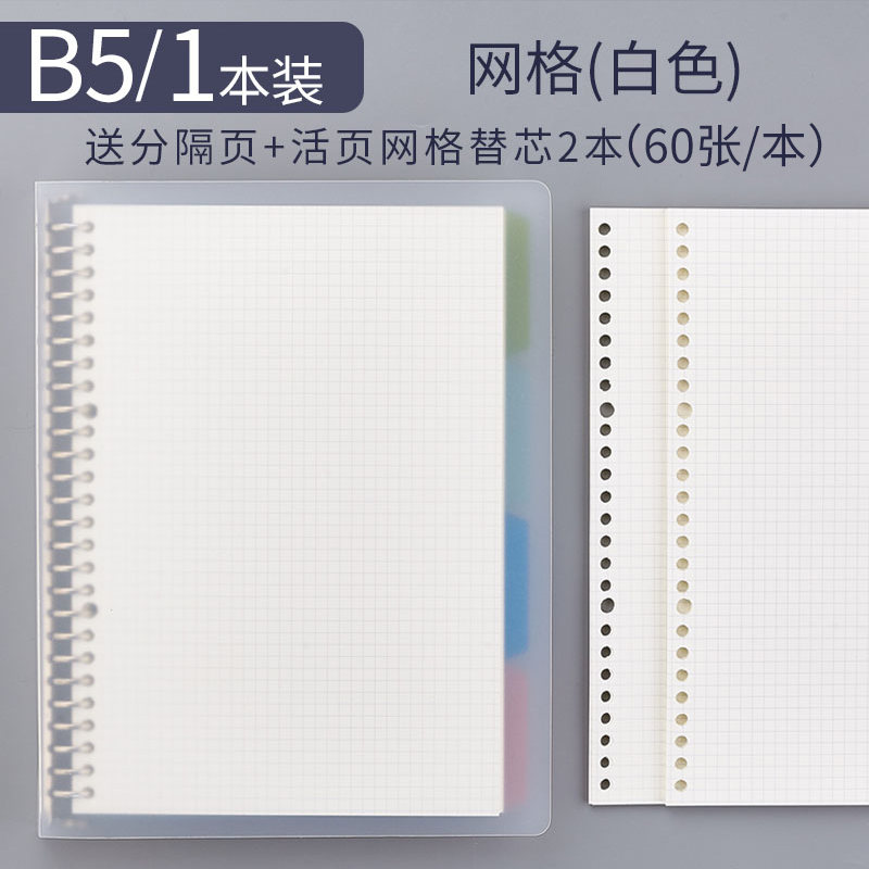 B5 Grid Book 1 (send 4 Separator Pages) + 2 Refills
