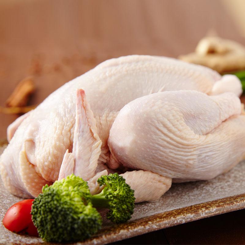上海崇明岛农家散养童子鸡1只装800g放养生态童子鸡土鸡活体现杀