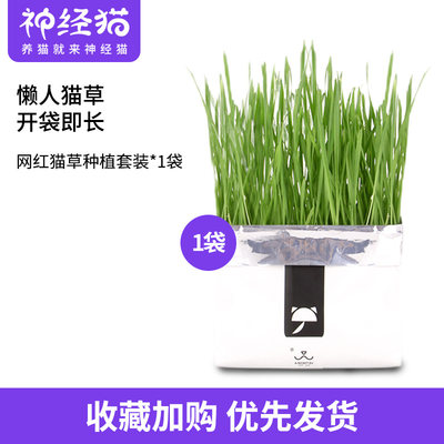 Not card net red cat grass catnip seed soil potted soil culture planting set hair removal ball cat snacks
