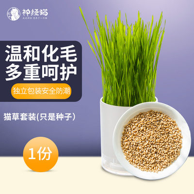 Nervous cat cat grass seed catnip wheat seed dog's tail grass seed vomiting hair ball cat food 8 packs * 1 box