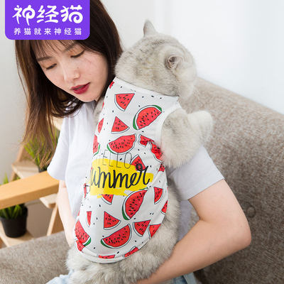 Spring and autumn clothing cute thin vest small baby cat milk cat cat pet clothes anti-hair loss net red vibrato with the same paragraph