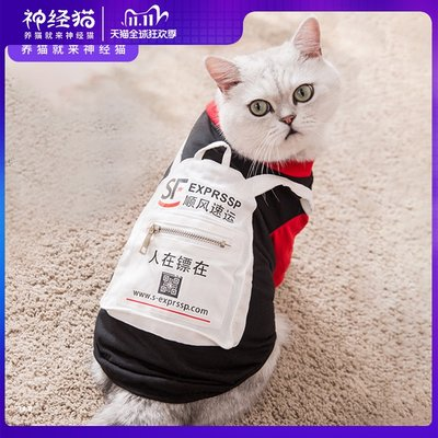 Vibrato with the same cat clothes thick and thin style funny funny small milk cat British short autumn and winter clothes thin pet anti-hair loss