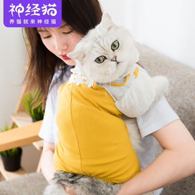 Cute bib four-legged clothes autumn and winter clothes thin style net red kitten small milk cat cat pet vibrato the same paragraph