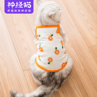 Autumn and winter clothes thin cat clothes cute pet kitten cat Korean vest small sling anti-hair net red dress