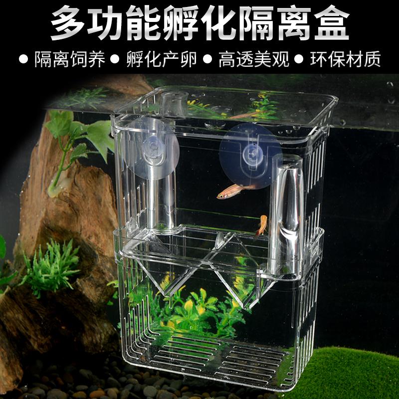 鱼缸孵化器繁殖盒亚克力隔离盒产卵盒孔雀鱼热带鱼孵化器斗鱼隔离