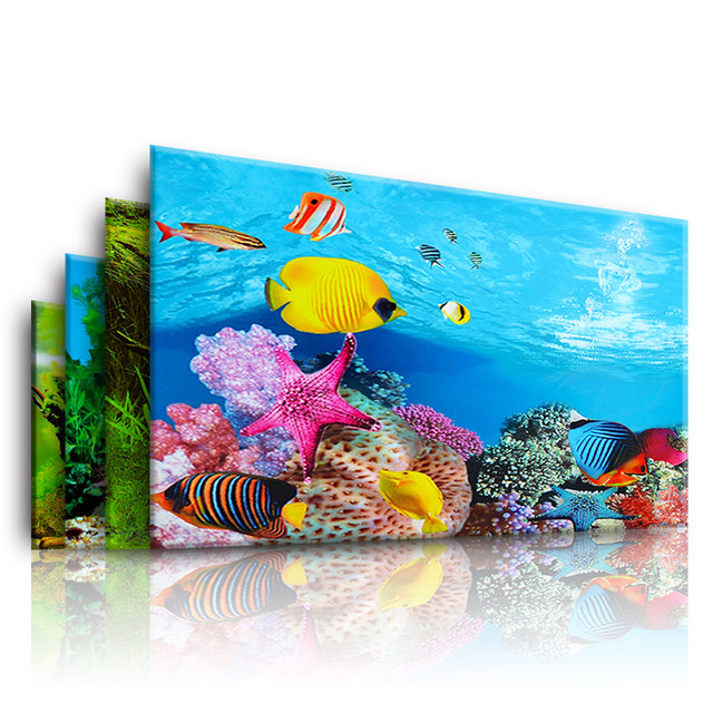 BACKGROUND aquarium tank sticker paper background Videos HD FIG. 3d perspective bottom of the tank landscaping decorative painting coral sand
