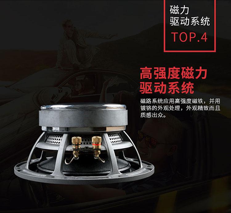 霸克UX6两分频套装喇叭