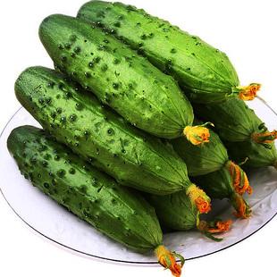 5斤装【果力乐】新鲜水果小黄瓜