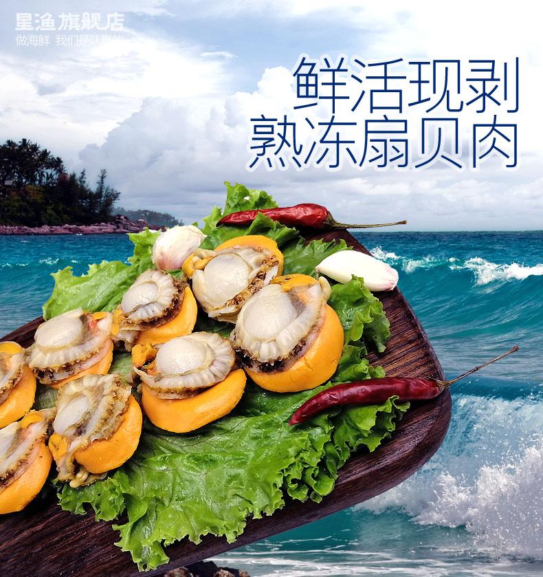 星渔 去壳新鲜熟冻扇贝肉 500g*3件 双重优惠折后¥49.9包邮(拍3件)