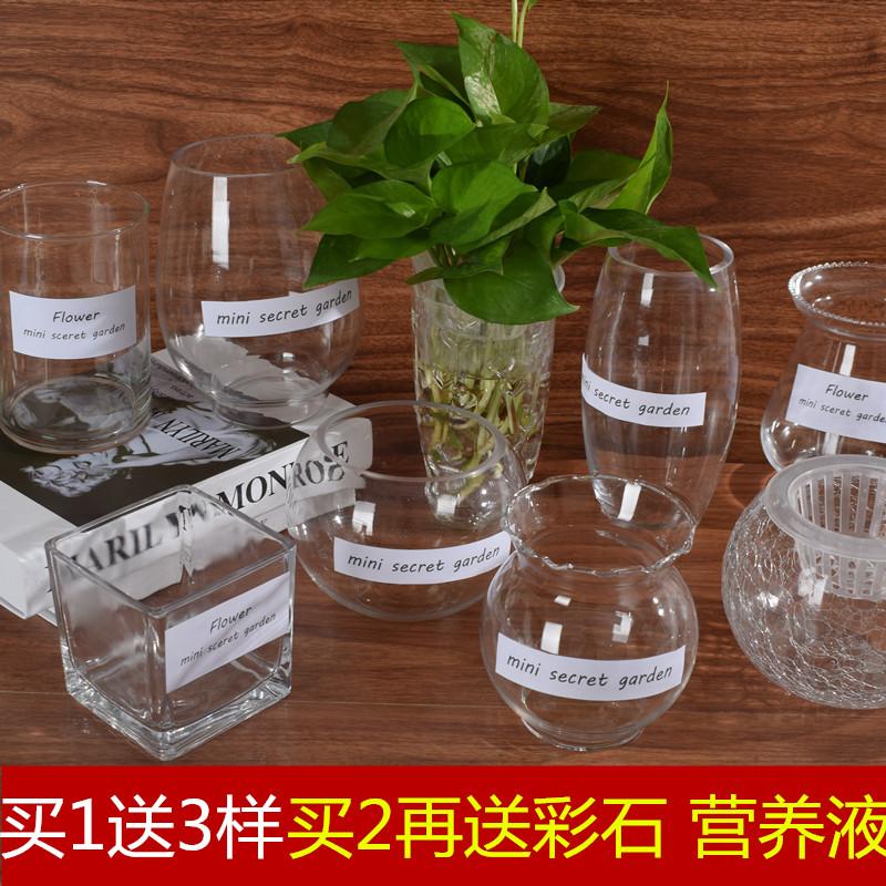 Стекло гидропоника завод ваза простой творческий цветочный горшок прозрачной воды поддержка cциндапсус золотистый гуань-инь бамбук цветочная композиция бутылка позволять устройство устройство блюдо