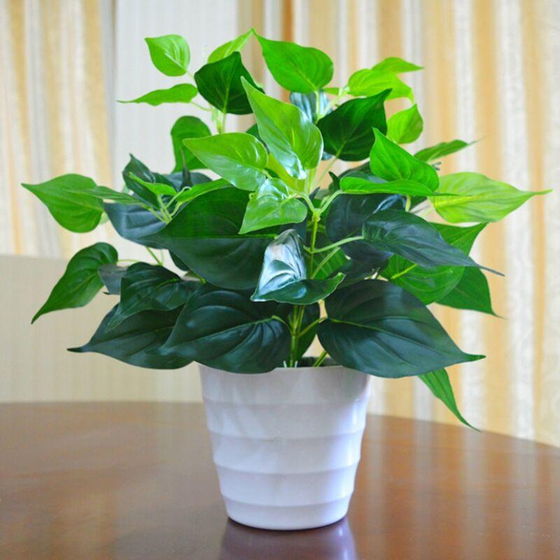 (过期) 绿植小盆栽室内外装饰花艺摆件 券后3.0元包邮