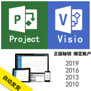 Project Visio 2019 2016 2013 2010 Professional Edition graphing project management activation key can remotely install high-speed download software