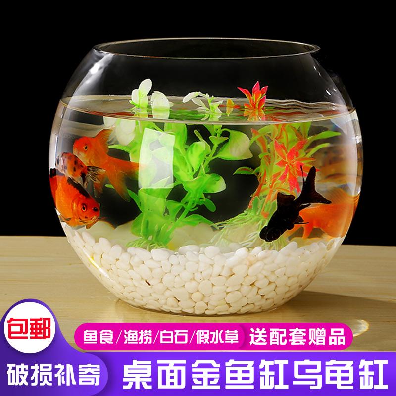 Fish Tank Aquarium Home Living Room