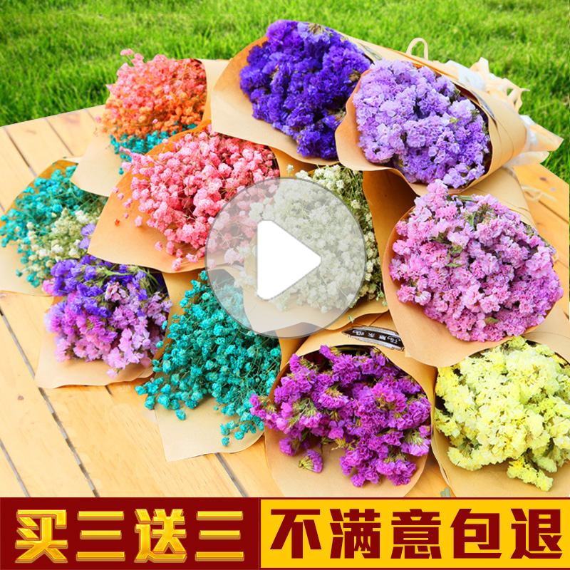 Dried flower bouquets, stars, forget me, home furnishings, living ...