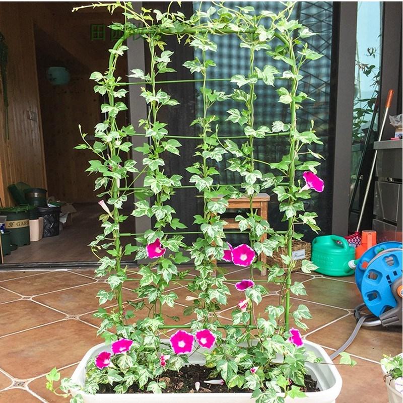 喇叭花攀爬网格架子支架花园艺可造型花屏庭院盆栽植物爬藤花架