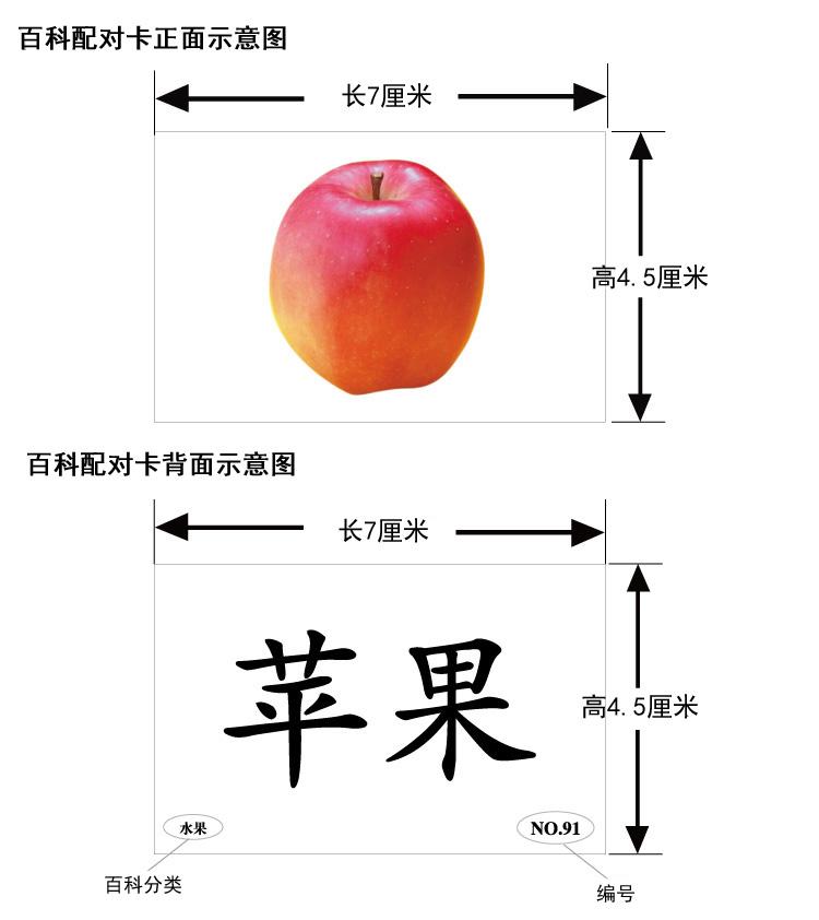百科配对卡3.jpg