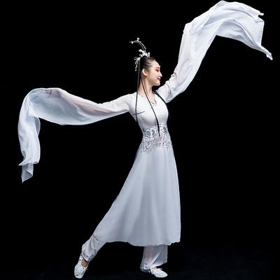 Chinese Folk Dance Costume Classical Dance Costume Chinese Wind Long Sleeve Dance Sleeve Dance Adult Watersleeve Dance Costume