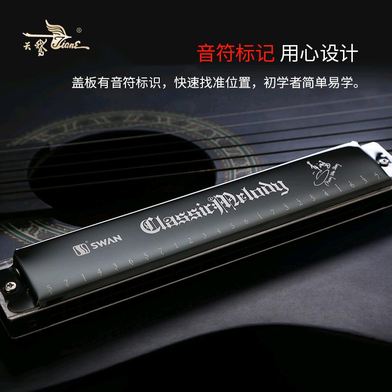 天鹅口琴24孔复音C调 高级成人自学专业演奏 儿童初学者入门乐器