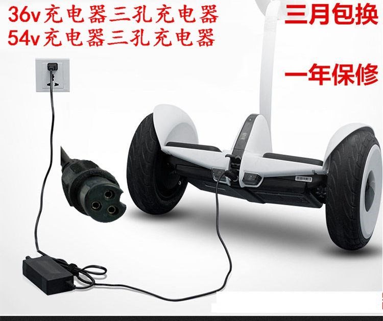 Double-wheel lithium battery electric balance Car charger three-core scooter power off single wheel power torsion car automatic