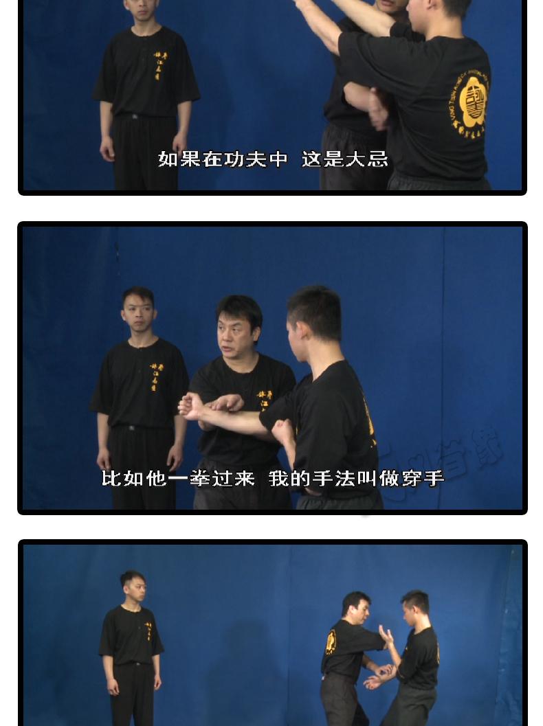 江志强咏春拳教程叶问咏春小念头寻桥标指木人桩4套高清视频