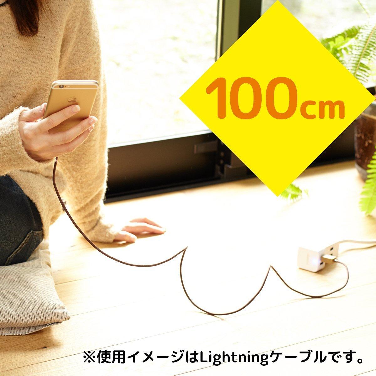 Cheero iPhoneX苹果手机数据线 Lightning数据线 MFI认证快充线
