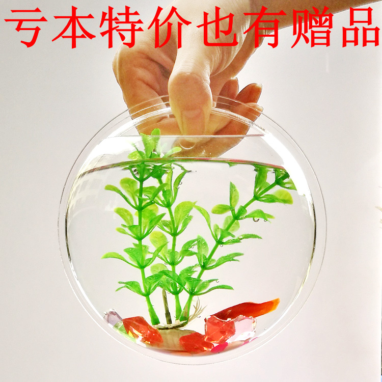 Grass Cylinder Wall Hanging Fish Tank Vase Hanging Flower Pot Wall