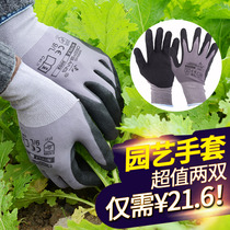Labor protection Gloves anti-skid anti-stick anti-cutting horticultural gloves wear-resistant anti-tie