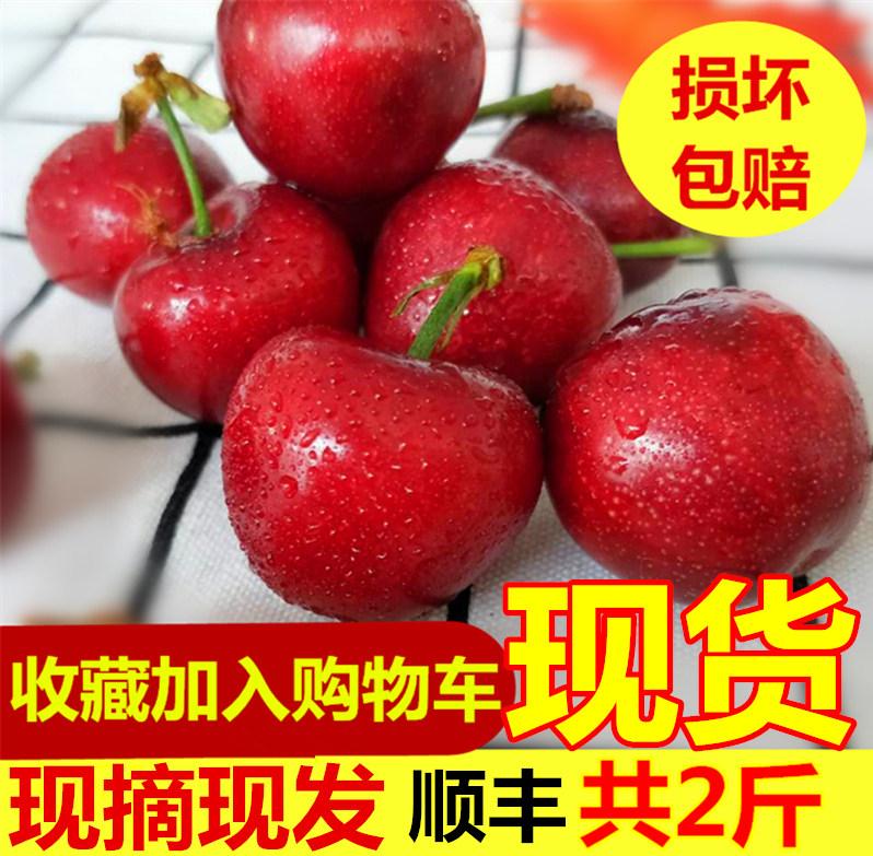 富鲁特水果现货大国产新鲜樱桃空运J级大果美早黑珍珠2斤包邮