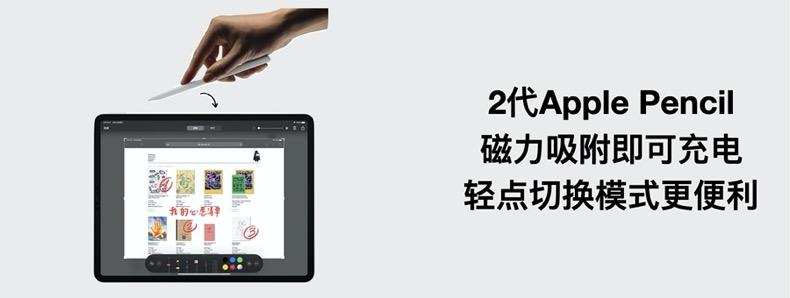【教育优惠】苹果英寸新款全面屏商务办公绘图设计平板电脑芯片高刷超广角游戏屏详细照片