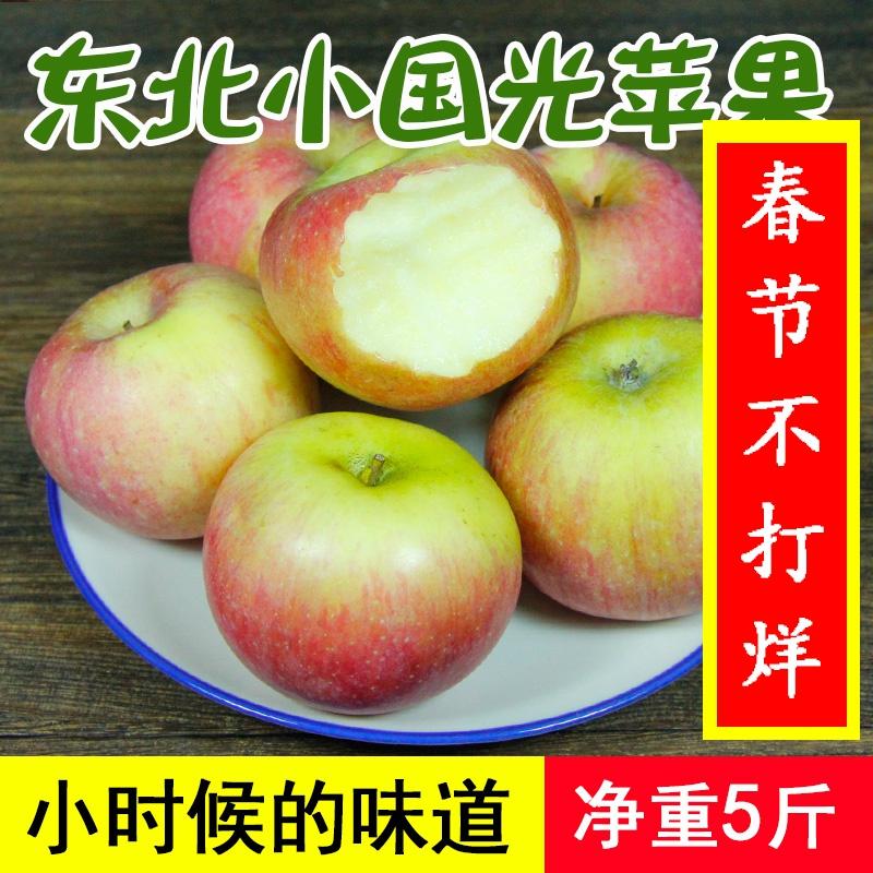 东北国光苹果5斤装包邮 辽宁特产新鲜水果非烟台小红富士包邮