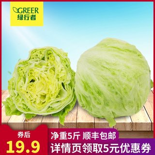 Ball lettuce round lettuce 5 pounds burger with Shandong fresh vegetables ready to eat light salad greens