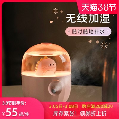 Pet bottle humidifie...