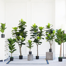 Qinye banyan simulation indoor office landing green plant basin picking Nordic tropical simulation plant Qinye banyan false basin picking